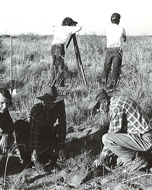 Vintage site photo with a transect