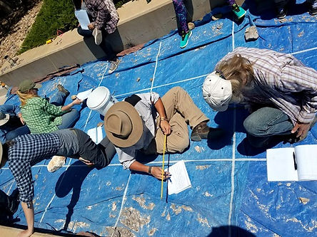 Students learn to map