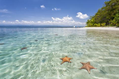 Bocas-del-toro-starfish-beach-Landscape-Photography-Marrero-2