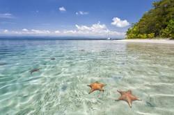 Bocas-del-toro-starfish-beach-Landscape-Photography-Marrero-2