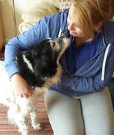 Shiatsu Bodyworks - Cheltenham - Canine pain and mobility relief