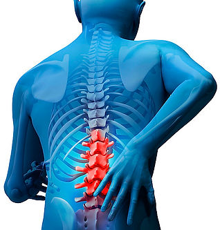 Shiatsu Bodyworks - Cheltenham - Lower Back Pain Relief with Shiatsu