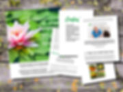ebook_inside2.jpg