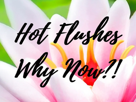 SURVIVING MENOPAUSE - WHY HAVE I SUDDENLY GOT HOT FLUSHES AT CHRISTMAS?