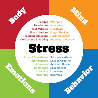 Shiatsu Bodyworks - Cheltenham - Stress affects mind body emotions and behaviour