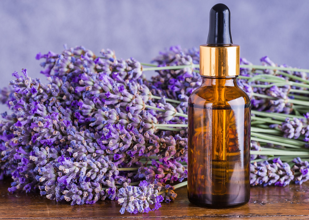 essential oils sensory issues smell lavender calming