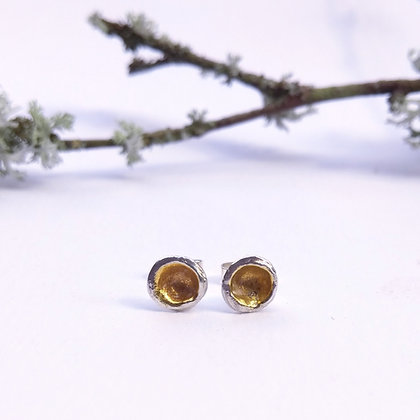 Gold-plated Shell Stud Earrings