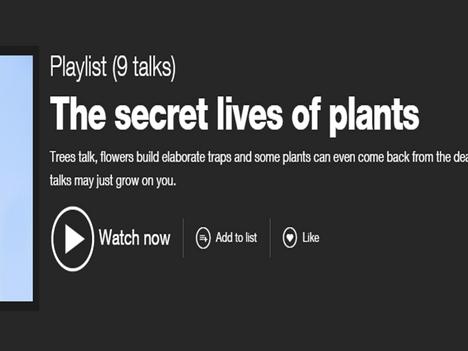 Fascinating TED talks on plants
