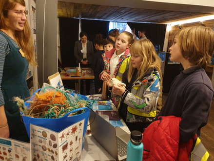 Swainswick Ambassadors for Plastics in the Ocean
