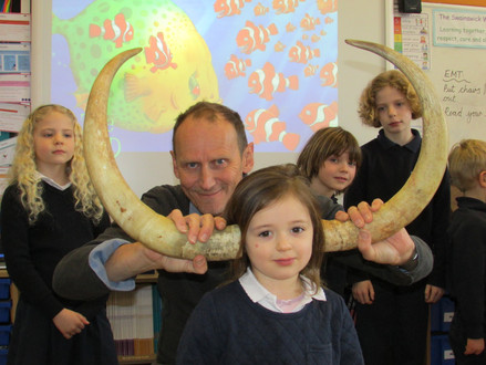 Dragon Day with Author Mark Robertson