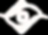 ThirdEye Consulting Logo