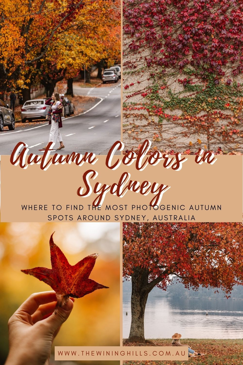 Autumn is such a gorgeous time of the year in Sydney! Check this post for incredible places to chase fall through the Blue Mountains and Hunter Valley!