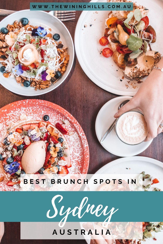 The Best Brunch Spots in Sydney including Celcius, Monsterra, Social Society