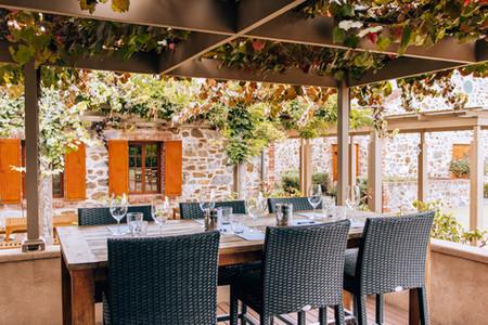 Murray Street Vineyards Barossa Valley South Australia