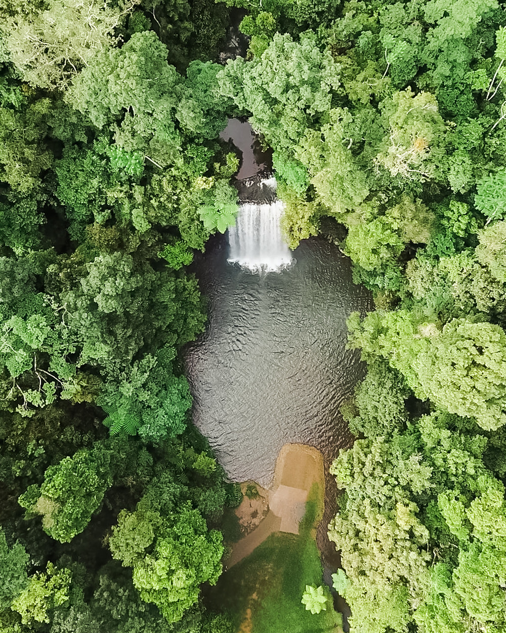 Millaa Millaa Falls on the Atherton Tableland near Cairns in Tropical North Queensland