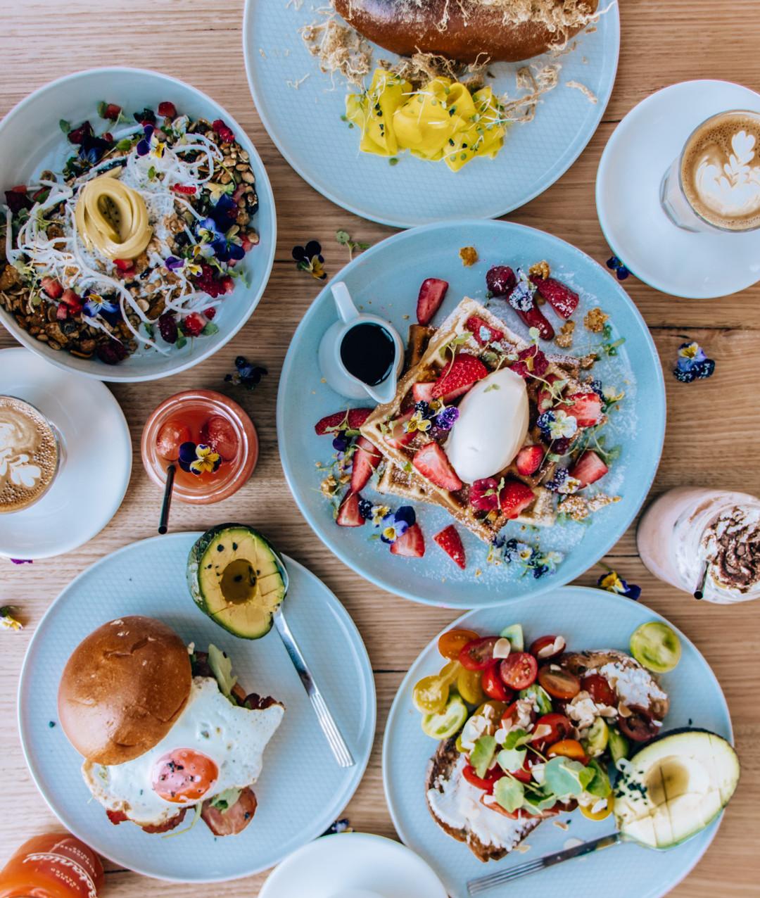 Cafe Monstera Best cafes in Sydney