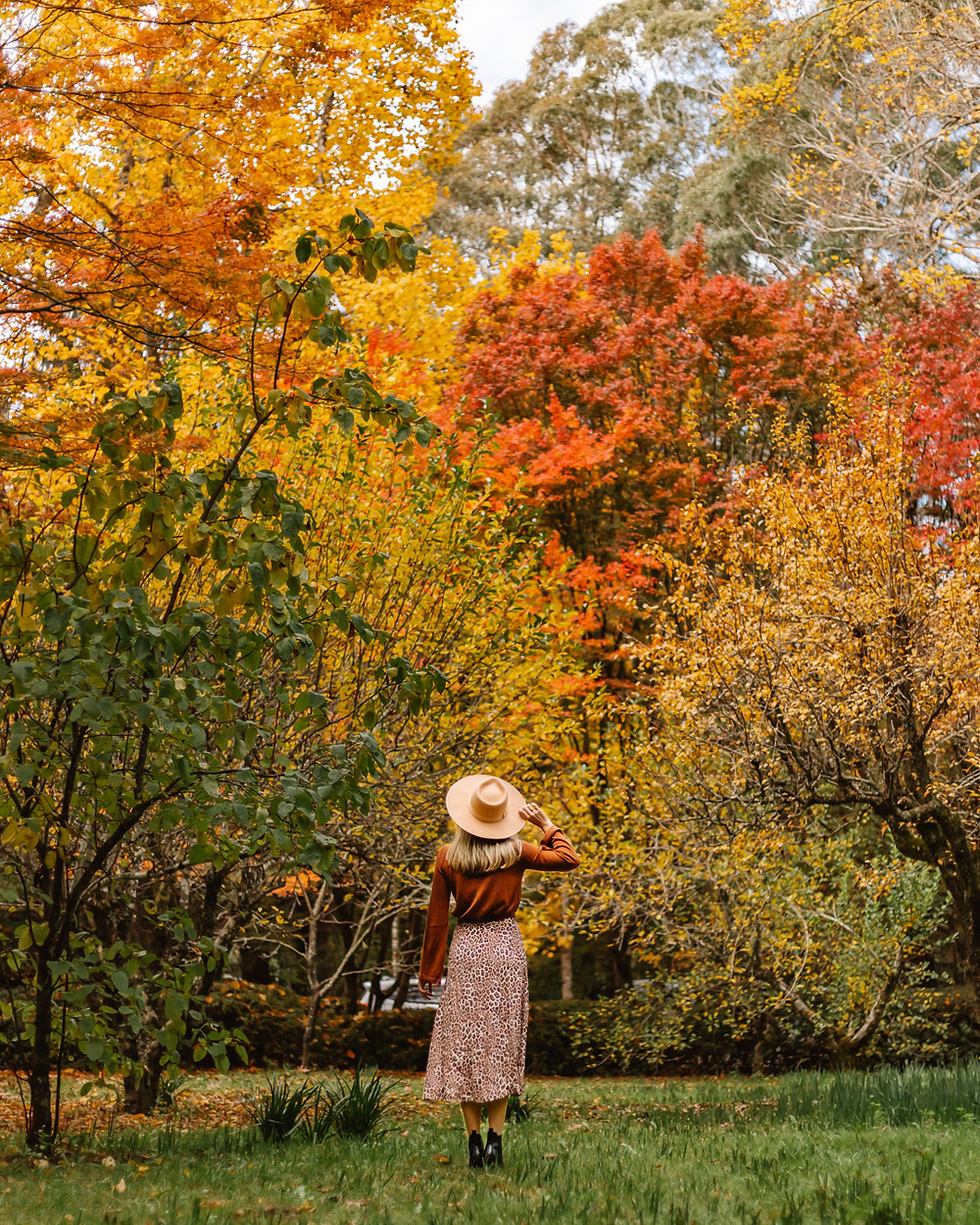 Want to find the best Autumn colours in Sydney? Head to the Blue Mountains to visit Breenhold Garden and Nooroo Garden. Hunter Valley is also so beautiful to visit in Fall.