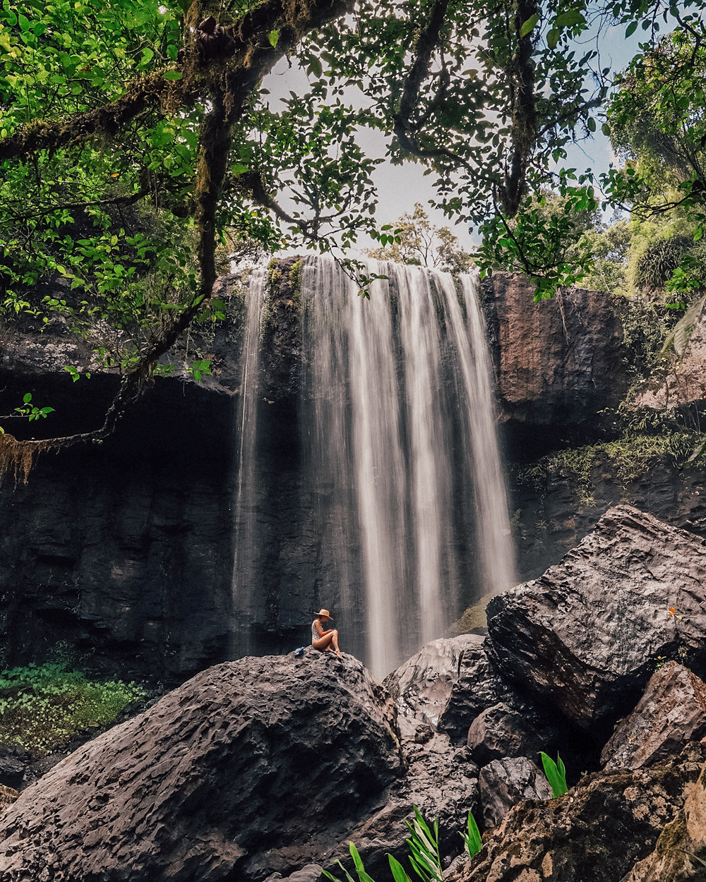 Zillie Falls on the Millaa Millaa Waterfall Circuit in the Atherton Tablelands in Tropical North Queensland