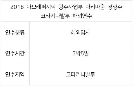 2018 아모레 전주사업부 아리따움-1.PNG