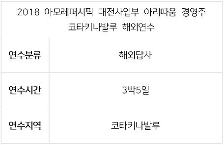 2018 아모레 대전사업부 아리따움-1.PNG