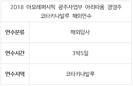2018 아모레 광주사업부 아리따움-1.PNG