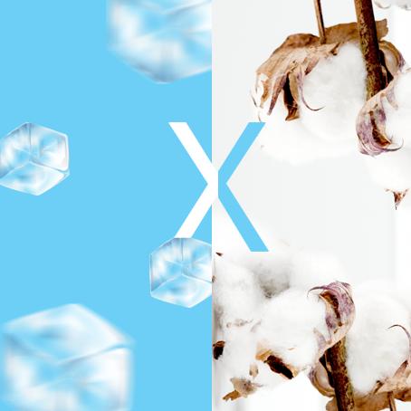 Tamanho do baú: refrigerado X carga-seca