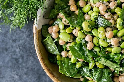4 Week 2400 Calorie Pre Developed Plant Based Meal Plan Package