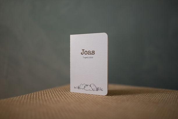 IMG_1577 Joas.JPG