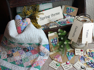 Spring thyme