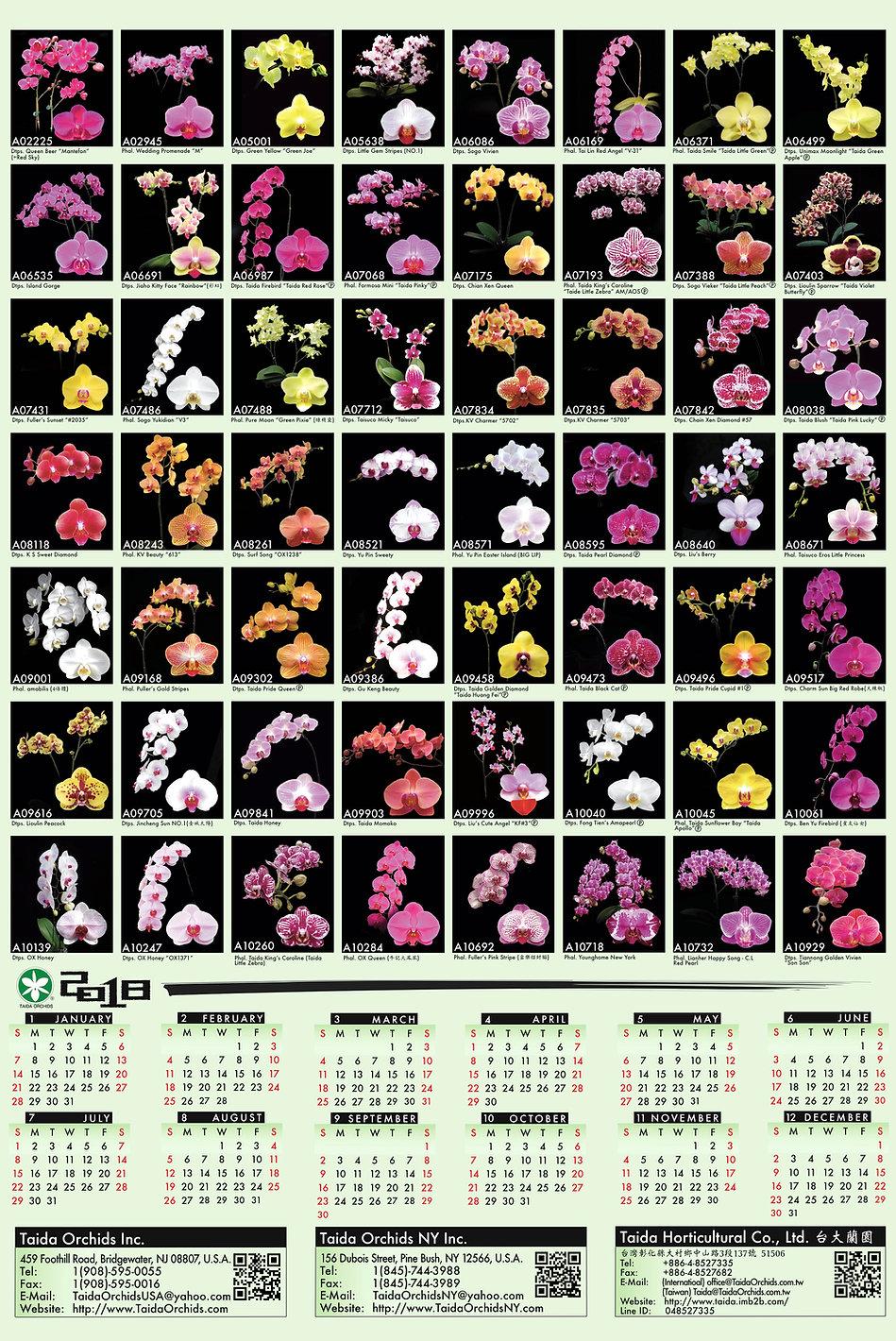 Taida Orchids 2018 Catalog