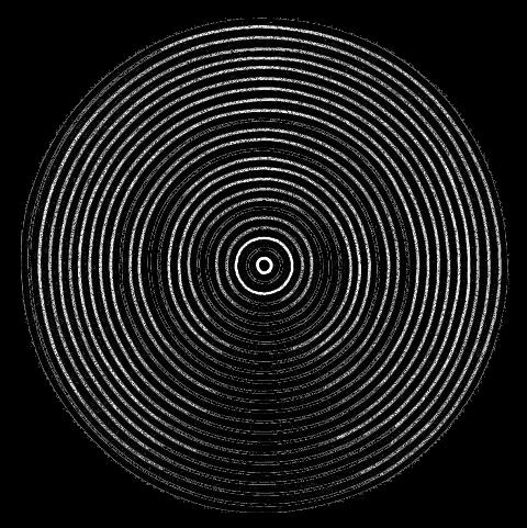 מבחן עצמי לגילוי אסטיגמציה יש להתבונן מקרוב באיור המעגלים עם כל עין בנפרד