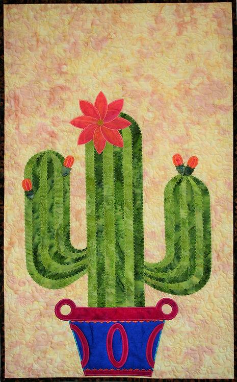 Cactus Specimen