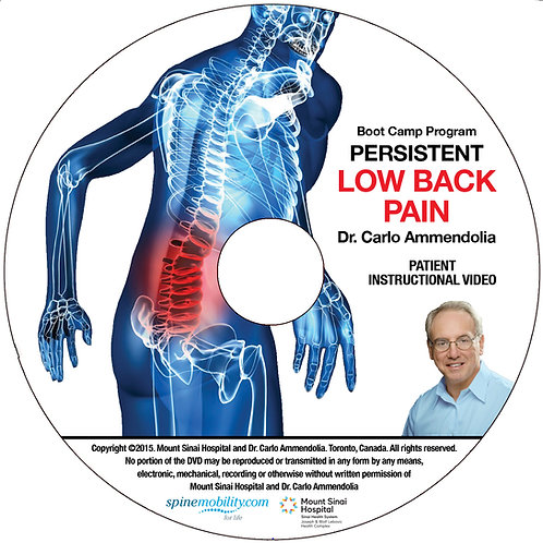 Persistent Low Back Pain Boot Camp Program Patient DVD (Includes 5)