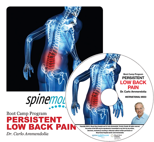 Persistent Low Back Pain Boot Camp Program Patient Workbook & DVD for Patients
