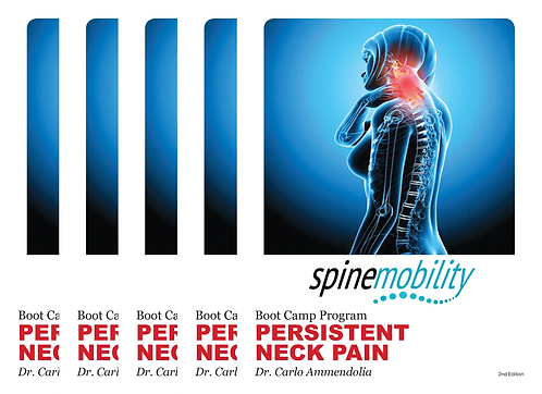 Persistent Neck Pain Boot Camp Practitioner Value Starter Kit (Includes 5)
