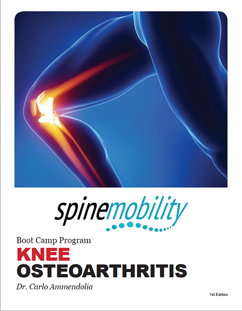 Knee Osteoarthritis Boot Camp Patient Workbook