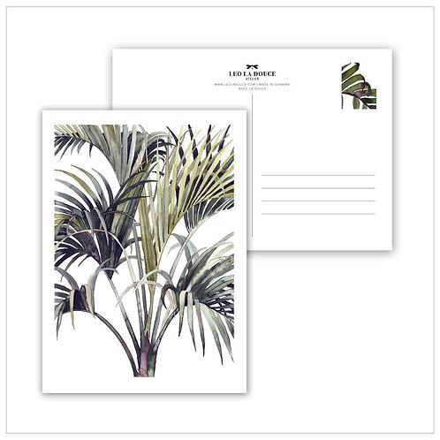 Cartolina - WILD PALM
