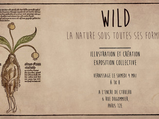 "Vernissage : Expo ""Wild"", collectif d'artistes"