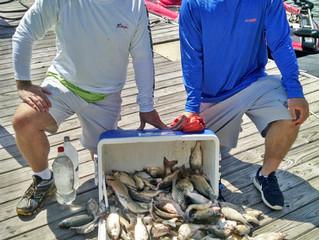 July Fishing on Kentucky Lake