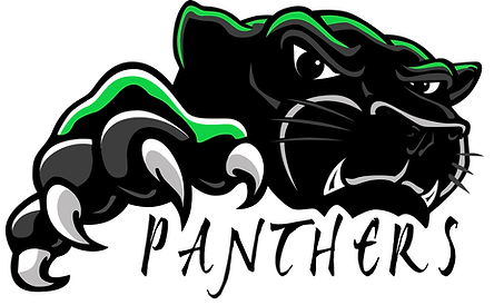 HS Panther.png