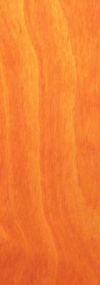 Orange BO.jpg