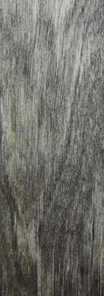 Dark Grey PMG.jpg