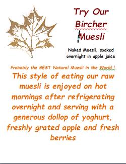 BIRCHER Maple