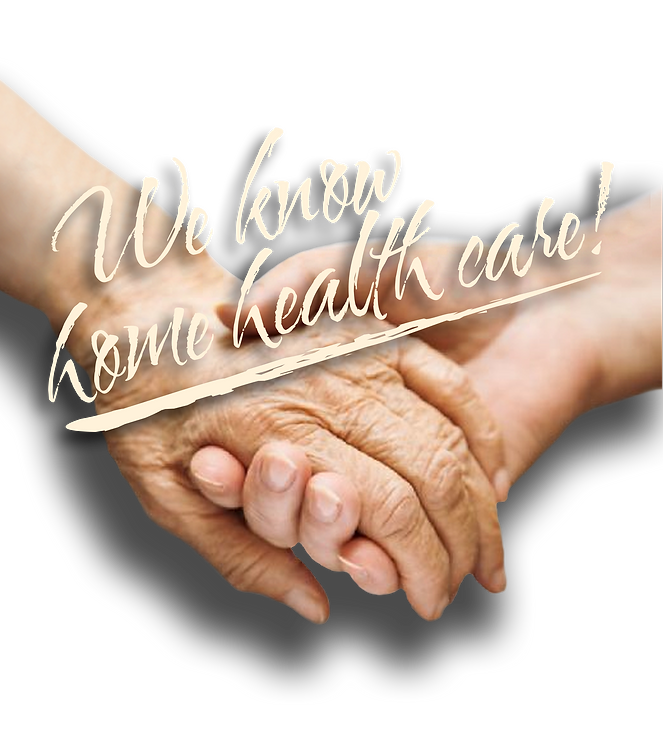 Emanuel Homecare Services, Health aides, home aides