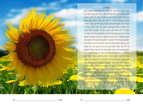 1891 - Sunflower Field Ketubah