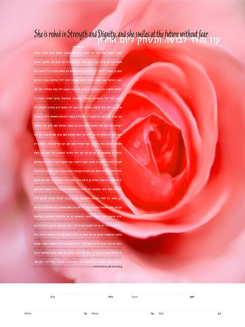 1828 - Peach Rose Ketubah