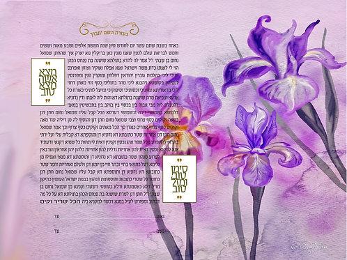 1843 - Watercolor Iris Ketubah