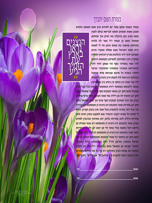 1812 - Crocuses Of Joy Ketubah