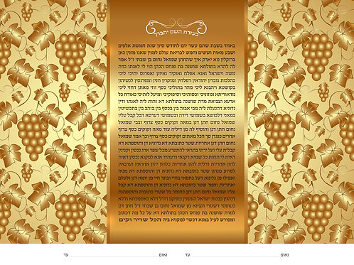 1826h - Vineyard of Gold Ketubah