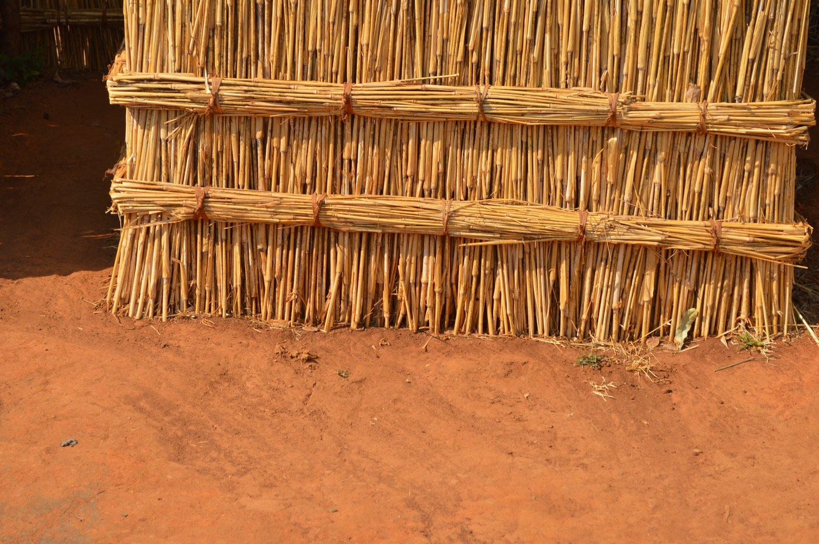 Nqhondowe, Kasungu (14).JPG